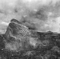 Dartmoor rock