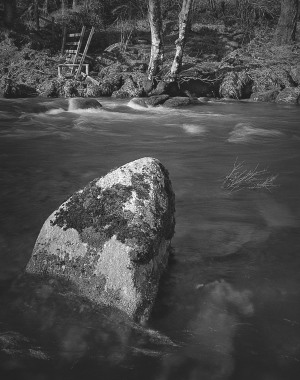 Rock in the river Dart