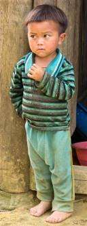 Little boy in stripes