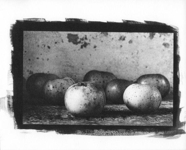 Apples-Palladium041